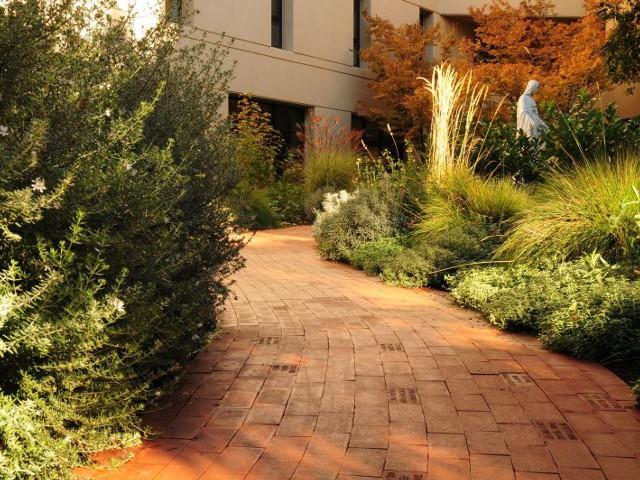 Healing Garden at Santa Rosa Memorial Hospital